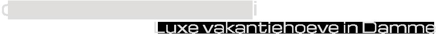d' Oude Schaapskooi Damme Logo